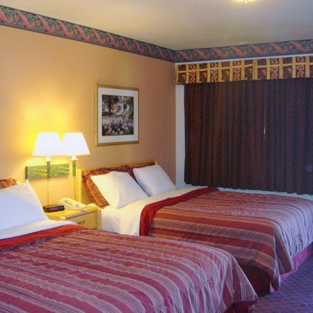 Muir Lodge Motel: Guest room