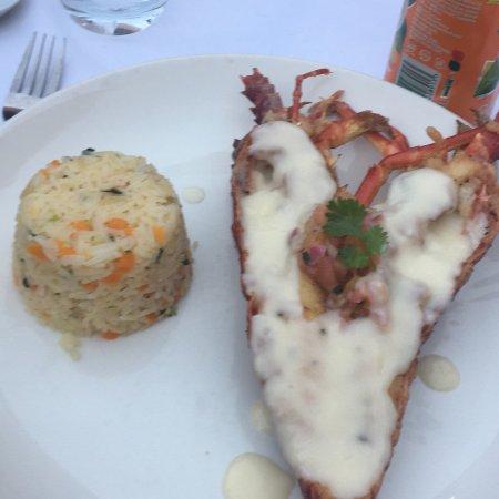 Beluga Restaurant張圖片