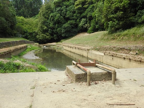 Whanganui, New Zealand: Remains of diving board at William Birch Pools.