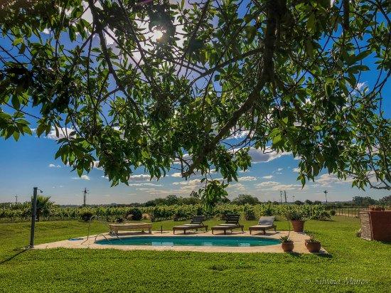 Bodega Boutique El Legado: piscina
