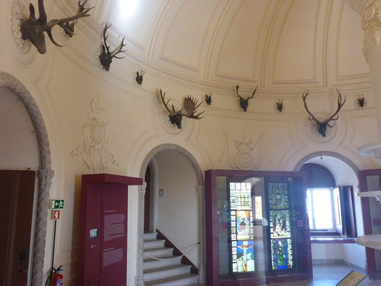 Park and National Palace of Pena: Stag Room