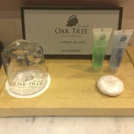 Oak Tree Emerald Semarang Hotel: Oak Tree Room, Complimentary, Breakfast and Cendana Restaurant
