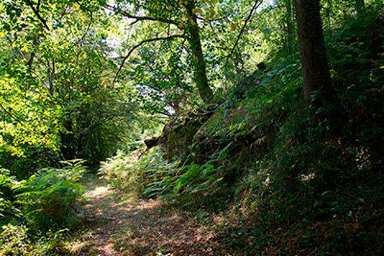 Thiat, Γαλλία: Wandelpad langs de rivier