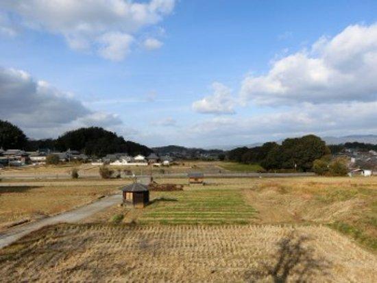 (明日香村, 日本)Tachibana-dera Temple - 旅遊景點評論