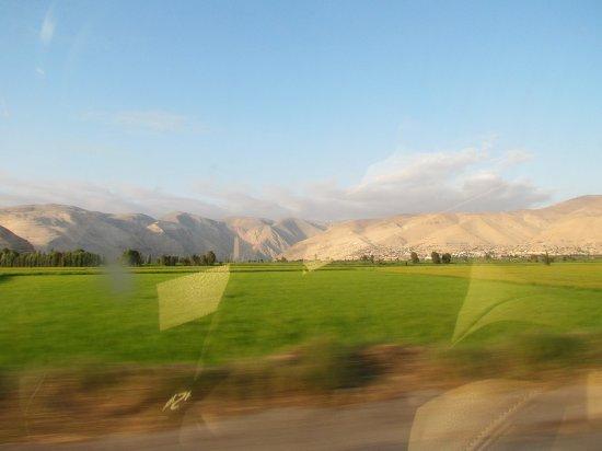 Camana, Peru: un valle verde en medio del desierto y los andes