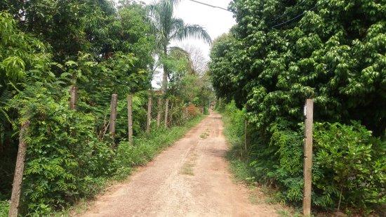 Ubon Ratchathani Province, Thái Lan: La campagne