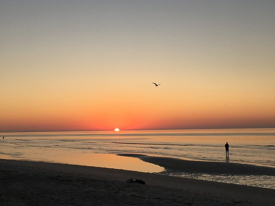 Foto de Tarpon Beach Condos