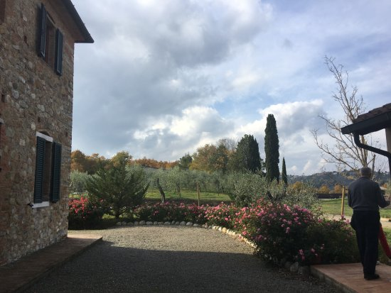Terricciola, Italie : A view from the garden