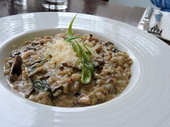 ריזוטו - Picture of Anabe Bar Restaurant, Modiin - Tripadvisor