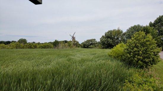 Windmill Island Gardens: DeZwann Windmill