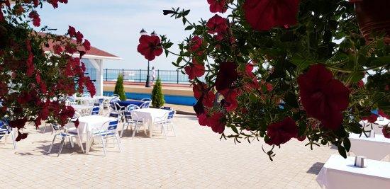 White & Blue Cafe Sochi: Яркие летние дни вместе с White&Blue