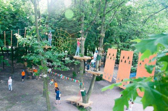 Rope Park Sonyachniy