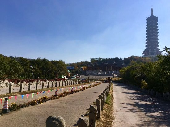 Shenyang Resmi