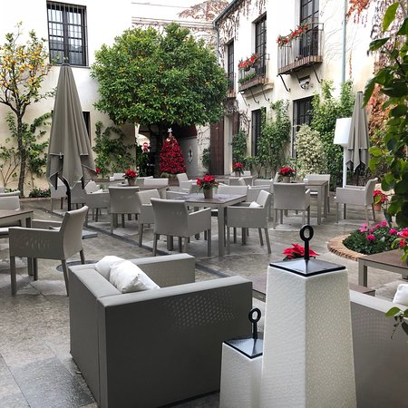 Hospes Palacio del Bailio: A wonderful courtyard with blossoming oranges that the kids and I took delight in picking off an
