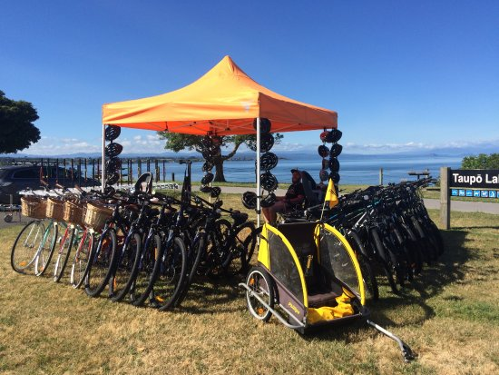 Bikes on Taupo