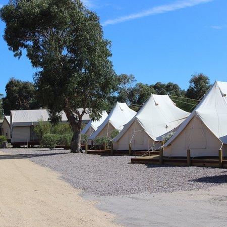 Scamander, Australia: photo1.jpg