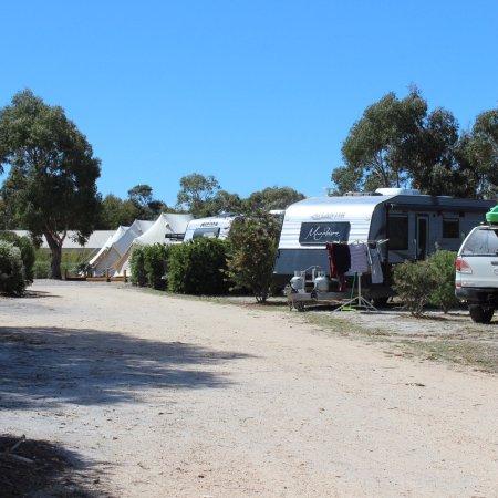 Scamander, Australië: photo4.jpg
