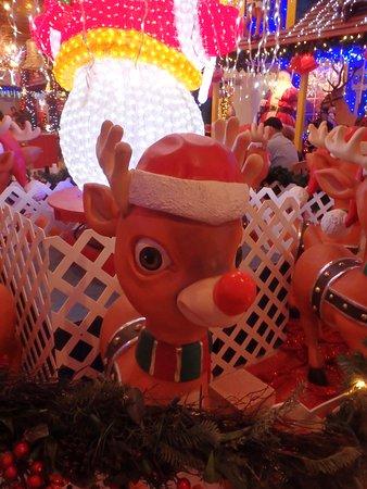 Morrow, Ohio: Every deer is Rudolph!