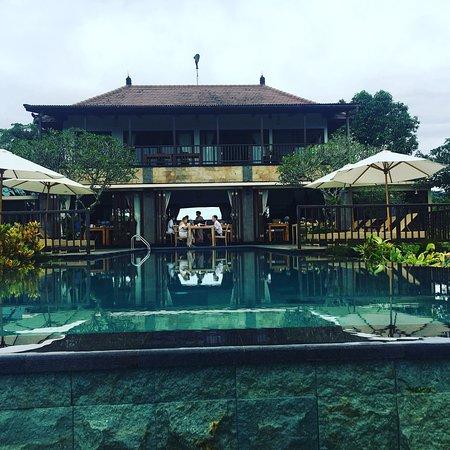 莫鼎人工林酒店照片