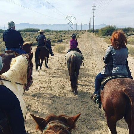 KOLI Equestrian Center: Our Christmas ride.