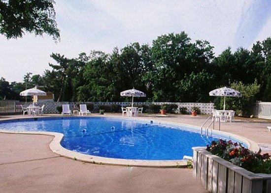 Seashore Park Inn: Pool