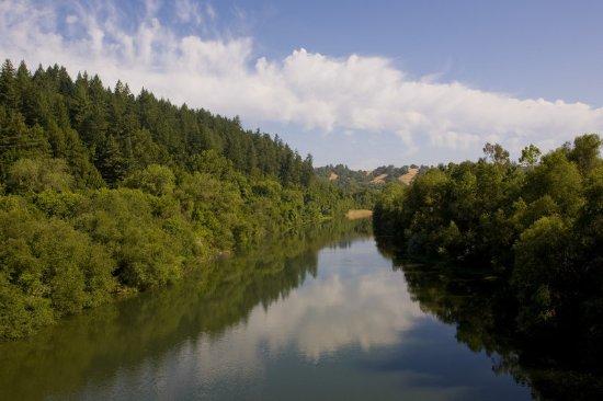 Forestville, CA: Other