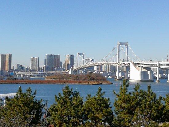 ランニングコース東京周辺11選|ランニングシューズの選び方