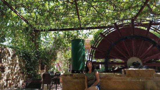 Kambos, Grecja: bahçe