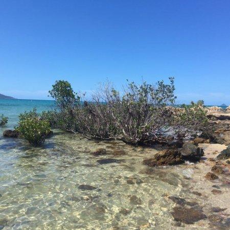 Hydeaway Bay, Australien: photo2.jpg