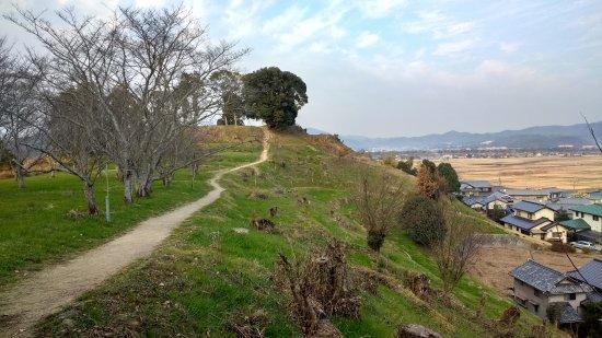 จังหวัดโอกายาม่า, ญี่ปุ่น: Tsukuriyama burial mound
