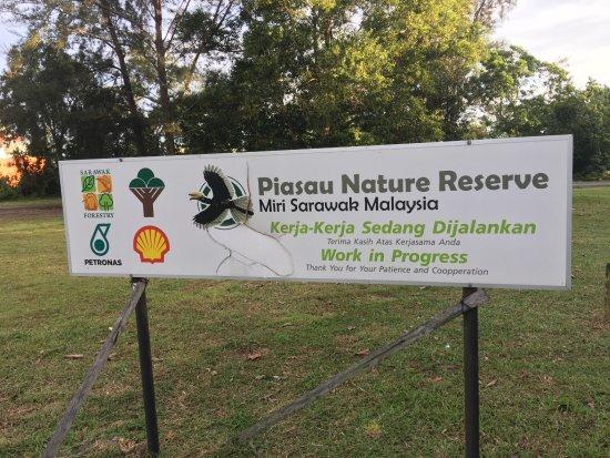Miri, Malaysia: Piasau Nature Reserve