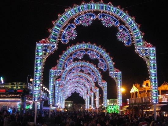 Winter Wonderland Light To Penetrate The Night