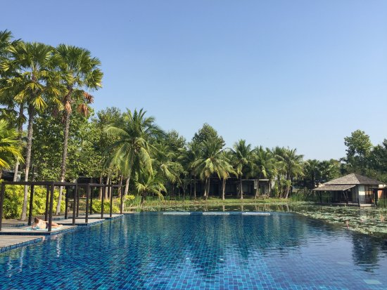 Lovely peaceful & natural resort with excellent guestrooms