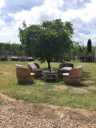 Waiheke Adası, Yeni Zelanda: Place to stay and relax!