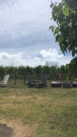 Waiheke Adası, Yeni Zelanda: Lovely to stay outside!