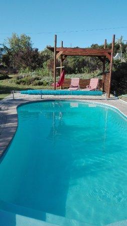 Gordon's Bay, Zuid-Afrika: Pool mit Sonnenliegen