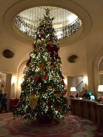 Christmas At The Ritz London.The Christmas Tree Picture Of The Ritz London Tripadvisor
