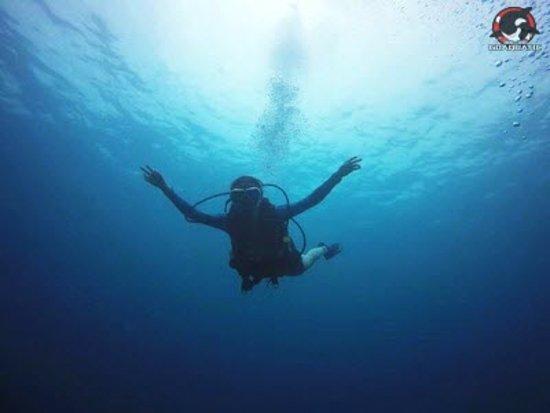 Go Aquatic: PADI Open Water Diver Course student during dive session at Kota Kinabalu marine park