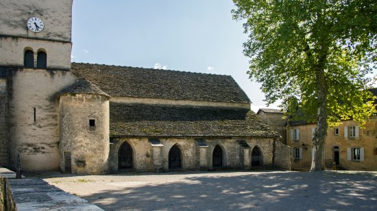 Chateau Chalon, France : церковь и одинокий платан