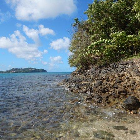Sandals Halcyon Beach Resort: photo2.jpg