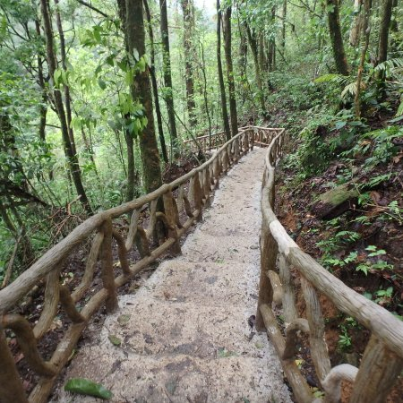 Tenorio Volcano National Park, คอสตาริกา: The walk to the waterfall