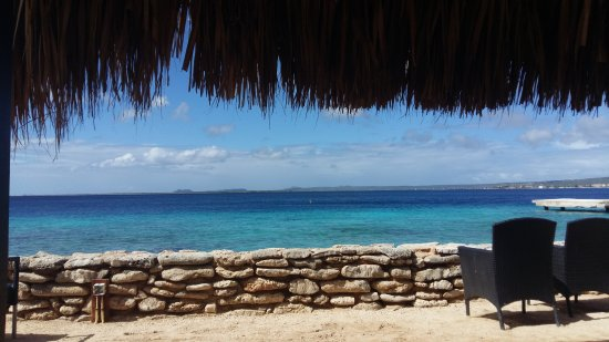 Plaza Resort Bonaire : Paradise!!!