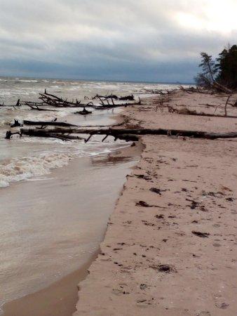 Kolka, ลัตเวีย: la spiaggia