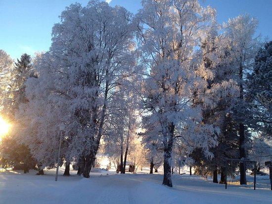 Suonenjoki照片