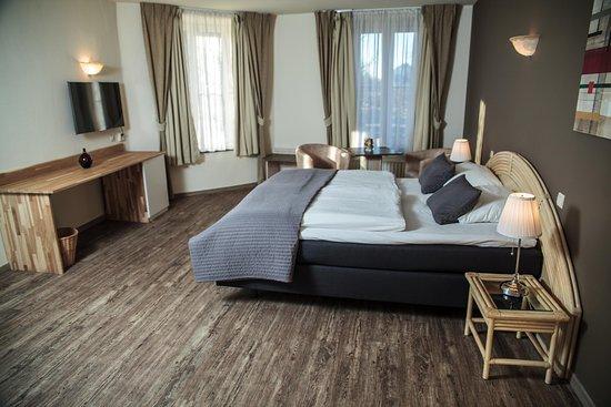 Han-sur-Lesse, België: superior room