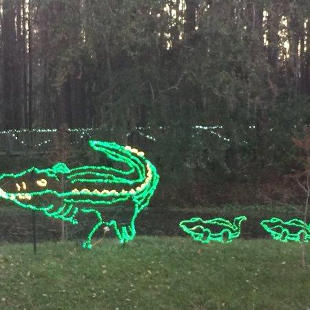 Okefenokee Swamp Park : photo3.jpg