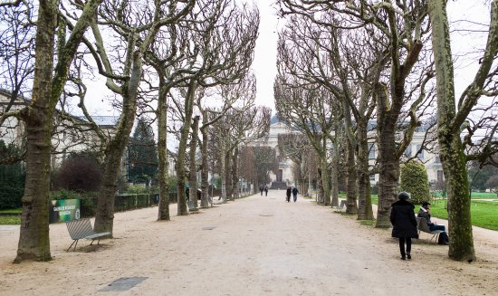 Jardin des Plantes : Damp and peaceful December!