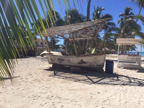 Bayahibe, Dominican Republic: Stilleven