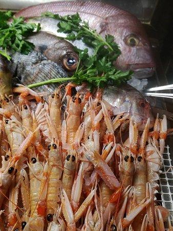 San Gregorio di Catania, Italia: bancone del pesce