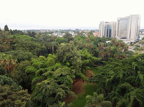 Overlook Harare Gardens In Style And Enjoy Majestic Sun